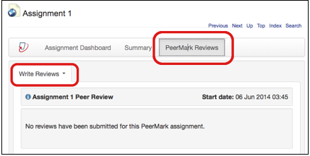 PeerMark Reviews tab with Write Reviews option.